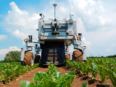 Per Roboter behandeln Bonner Landwirtschaftsforscher einzelne erkrankte Feldpflanzen individuell.
