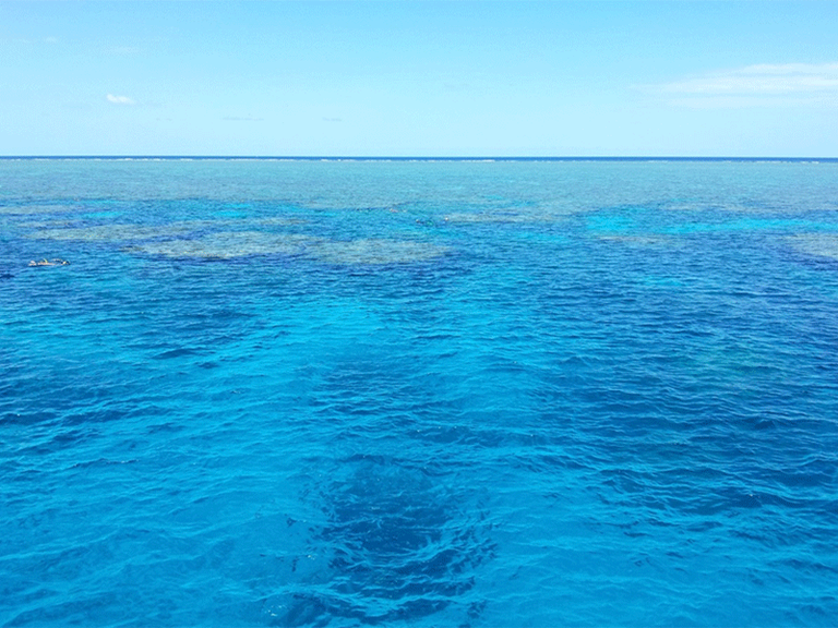 Right click to download: Sea level Cairns